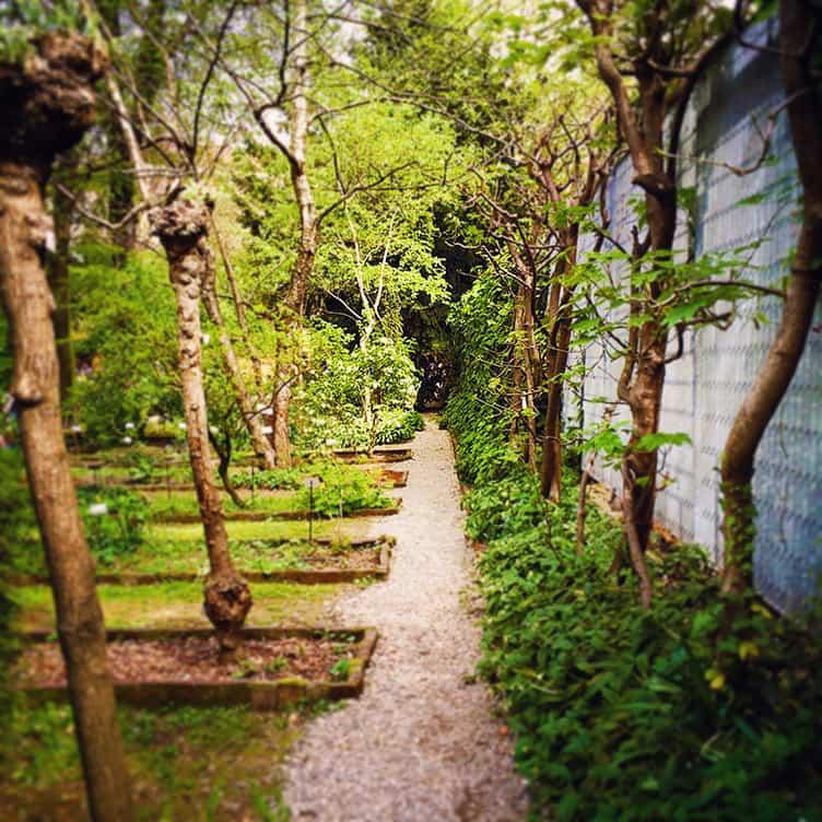 Brera Botanical Garden