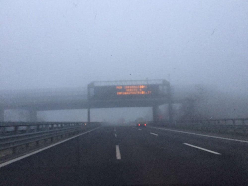 Italian Fog